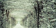tunnel-verde-ucraina-c