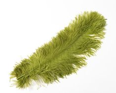 All Ostrich Wing Plume Feathers 20 inches and up by the Piece (CHOOSE YOUR COLOR) Ostrich Feathers, Wings, Decor Ideas, Decoration, Color, Colour, Decorating, Dekorasyon, Deko