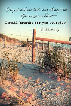 Every breath you took was through me. You are gone and yet I still breathe for you every day- Lorinda Morley