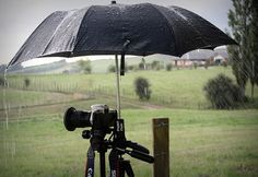 Introducing the new Cambrulla Now you can capture those special moments in all WEATHER! Disclaimer: no Digital cameras were harmed in any way during this shoot! Under My Umbrella, Cute Umbrellas, Smell Of Rain, No Rain, Pictures Of People, Around The Worlds, Weather, In This Moment