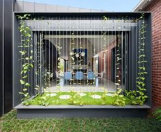 Matt Gibson's Shadow House extension stands in the shade of an Edwardian home