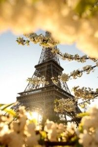 The World First Wander – The best travel writing on the Internet. Paris in the Springtime