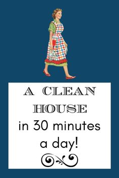 A Clean House - How to keep your house looking clean all the time in just 30 minutes a day Air One, Enough Book, Toilet Spray, Flylady, Winter Project, Project List, Neat And Tidy, Window Cleaner, How To Make Bed