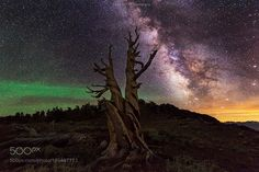 As Numerous Camera: nikon D810 Focal Length: 14mm Shutter Speed: 25sec Aperture: f/2.8 ISO/Film: 6400 Image credit: http://ift.tt/2aSVJJT Visit http://ift.tt/1qPHad3 and read how to see the #MilkyWay #Galaxy #Stars #Nightscape #Astrophotography