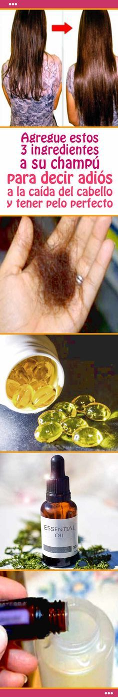 Agregue estos 3 ingredientes a su champú para decir adiós a la caída del cabello y tener pelo perfecto Castor Oil, Doterra, Healthy Tips, Hair Loss, Tapas, Dental, Your Hair, Beauty Hacks, Hair Care
