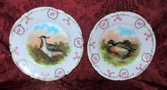 Pair of Bone China Game Plates Delicately by SimplyMarvelousMary