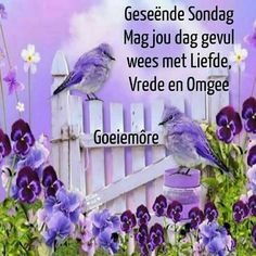 Morning Blessings, Good Morning Wishes, Day Wishes, Lekker Dag, Goeie Nag, Goeie More, Afrikaans Quotes, Morning Greeting, Special Quotes