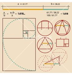 Illustration of Golden Ratio, Golden Proportion vector art, clipart and stock vectors. Fibonacci Golden Ratio, Fibonacci Spiral, Geometry Art, Sacred Geometry, Divine Proportion, Graphisches Design, Logo Design, Design Theory, Technical Drawing