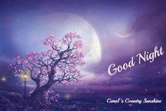 Good night! via Carol's Country Sunshine on Facebook
