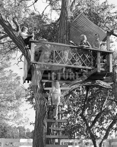 We loved our tree house