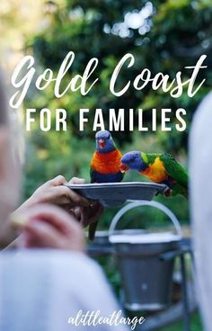 With beautiful beaches, delicious food and great theme parks, the Gold Coast has something for everyone. These are the best things to do on the Gold Coast, Queensland for families. Winter Travel, Summer Travel, Travel With Kids, Family Travel, Group Travel, Working Holiday Visa, Working Holidays, Australia Tourism, Visit Australia