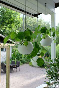 b.for soft air, everywhere it's green #greenidea #greenery #garden #outdoor…
