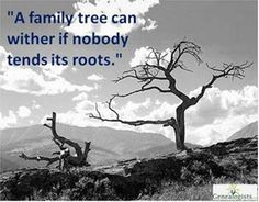 A family tree can wither if nobody tends to its roots.
