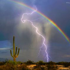 This photo of a bolt of lightning hitting the ground in front of a rainbow was captured on camera by Greg McCown in Marana, Arizona. The avid storm chaser used a lightning trigger attached to his camera to bag the shot. Nature Pictures, Cool Pictures, Beautiful Pictures, Landscape Pictures, All Nature, Amazing Nature, Natur Wallpaper, Thunder And Lightning, Lightning Storms