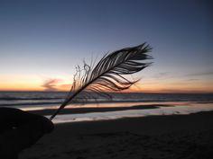 Fonte da Telha Weekend Getaways, Wander, Guy, Sunset, World, Beach, Photography, Photograph, The Beach