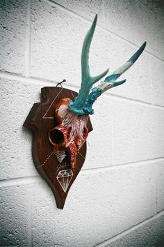 Roe Deer Skulls