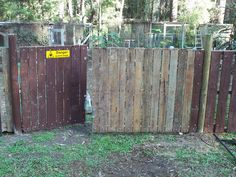 Backyard Poultry Forum • View topic - The Marema and the pallet fence!