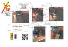 Presentación XS felina