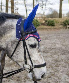 grey horse, earbonnet, flybonnet, fly bonnet, dapple grey, ear bonnet, custom bonnet, diy ear bonnet, diy fly bonnet, blue,
