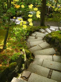Portland Japanese Garden, Oregon. Love the rugged symmetry of these steps.