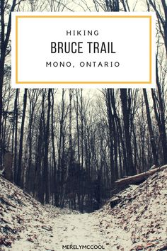 Hiking the Bruce Tra