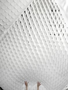 Fish scales - nice ceiling cover
