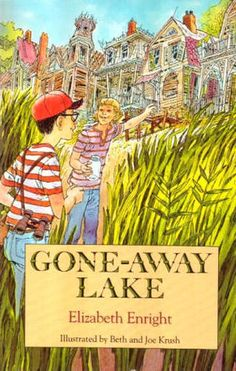 Image result for book image cover gone away lake