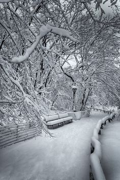 Snow covering a path along the Lake in Central Park, New York