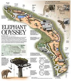 The San Diego Zoo Elephant Odyssey shows models of prehistoric animals of Southern California alongside enclosures with their modern living equivalents.