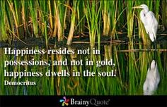 Inspirational Quotes - Happiness resides not in possessions, and not in gold, happiness dwells in the soul. Democritus