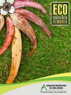 Eco Carrots, Banana, Fruit, Vegetables, Food, Carrot, The Fruit, Veggies, Bananas