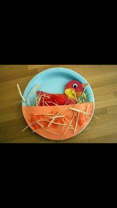 Piatto uccellino!
