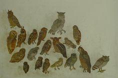 Interiors & Birds - Lucy Mellor