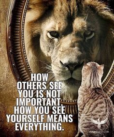 Self image means self confidence.