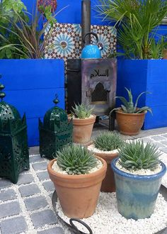 Shuttleworth College Moroccan-inspired garden with outdoor kitchen area including wood burner - great courtyard design for small gardens