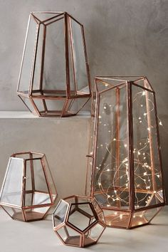 Terrariums can hold plants, succulents, candles or fairy lights! Love them. Aurora String Lights - anthropologie.com
