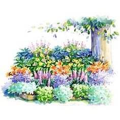 No-Fuss Shade Garden Plan -- Astilbe Barrenwort Bleeding Heart Foamy Bells Hellebore Hosta Japanese Painted Fern Lamium.
