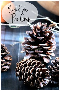 Create beautiful and fragrant pine cones with wax and your favorite oils. This easy craft can be used anywhere in your home or as a great gift. Making Essential Oils, Pure Essential Oils, Light Up The Candle, Scented Pinecones, Soy Candle Making, Essential Oil Candles, Aromatherapy Candles, Scented Wax, Diy Candles