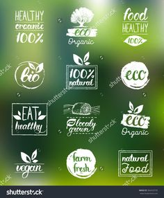 Vector hand drawn eco organic bio logos. Vegan, healthy food signs. Raw, vegetarian badges and stickers. Tags and labels set for cafe, restaurants, products packaging.