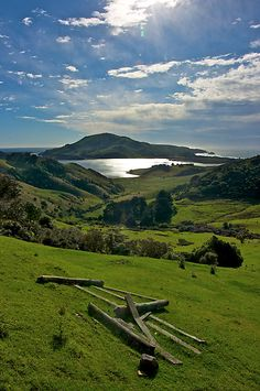 Otago Penninsula in Southern New Zealand