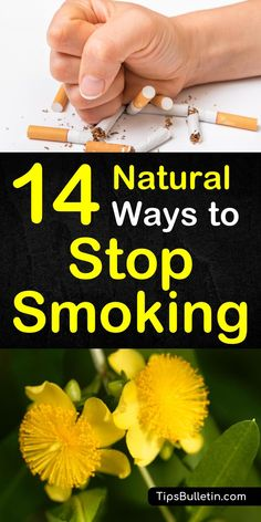How to stop smoking naturally, including tips and remedies to quit smoking. Covering natural health products, motivation, cold turkey, image inspiration, diet as well as acupuncture and meditation.#quitsmoking #stopsmoking #health #naturally Cold And Cough Remedies, Natural Cold Remedies, Cold Home Remedies, Sleep Remedies, Ways To Stop Smoking, Help Quit Smoking, Smoking Weed, Quit Smoking Motivation, Acupuncture Benefits