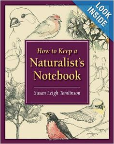 How to Keep a Naturalist's Notebook: Susan Leigh Tomlinson: 9780811735681: Amazon.com: Books