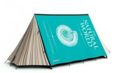 I need this tent from Fieldcandy to go with the stripey canoe (also on this board).