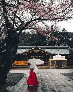 Yasukuni Shine Yoshiro Ishii