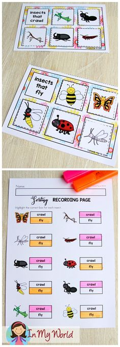 Spring Math Centers for Kindergarten - In My World FREE Spring Math Centers for Kindergarten. Sorting activity: insects that fly and insects that crawl. Insect Activities, Preschool Science Activities, Eyfs Activities, Preschool Themes, Math Centers, In Kindergarten, Bugs, Homeschool, Curriculum