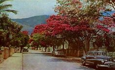 San Bernardino, Caracas (1958)