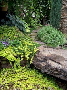 55 Gorgeous Rock Pathway Design Ideas To Enhance Your Beautiful Garden 55