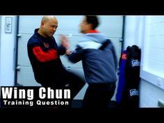 Master wong wing chun lesson 22 homework