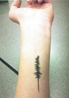 Pine tree tattoo. So close to what I want! Maybe even same spot. Maybe a bit more rustic or disheveled. Most likely back of my arm above elbow though.