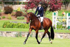 Lillie Keenan Old Salem Farm Spring Horse Show 2013